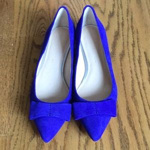 Banana Republic Blue Suede Shoes NWOB